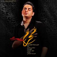 Hamidreza Alikhani - 'Moharam'