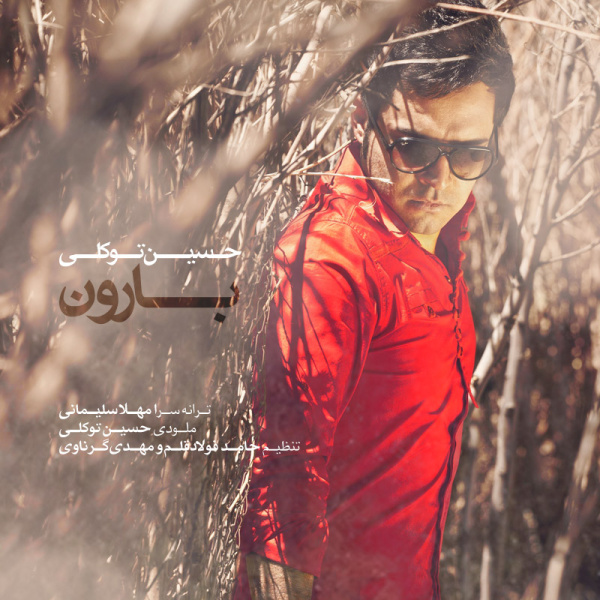 Hossein Tavakoli - Baroon