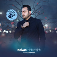 Keyvan Talebizadeh - 'Negar'