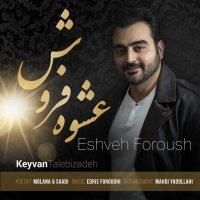 Keyvan Talebizadeh - 'Eshveh Foroush'
