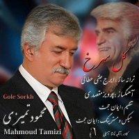 Mahmoud Tamizi - 'Gole Sorkh'