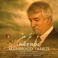Mahmoud Tamizi - 'Nefrin'