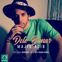 Majid Adib - 'Dele Bimar'