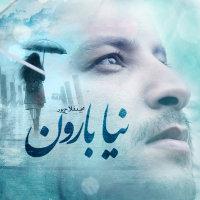 Majid Falahpour - 'Naya Baroon'