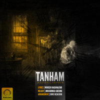 Majid Falahpour - 'Tanham'