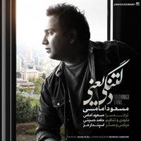 Masoud Emami - 'Deltangi Yani'