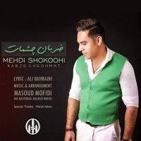 Mehdi Shokoohi - 'Zarabane Cheshmat'