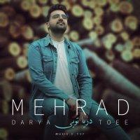 Mehrad M - 'Darya Toee'