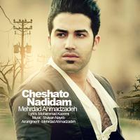 Mehrdad Ahmadzadeh - 'Cheshato Nadidam'