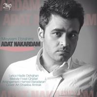 Meysam Ebrahimi - 'Adat Nakardam'