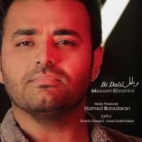 Meysam Ebrahimi - 'Bi Dalil'