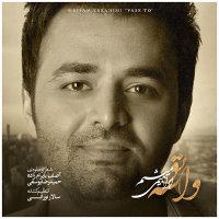 Meysam Ebrahimi - 'Vase To'