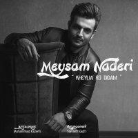 Meysam Naderi - 'Kheylia Ro Didam'
