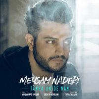 Meysam Naderi - 'Tanha Omide Man'