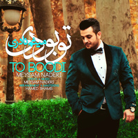 Meysam Naderi - 'To Boodi'