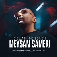 Meysam Sameri - 'Delam Migireh'