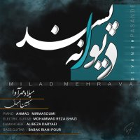 Milad Mehrava - 'Divaneh Pasand'