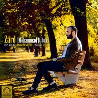Mohammad Bibak - 'Zard'