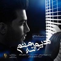 Zandyar - 'Divane Manam'
