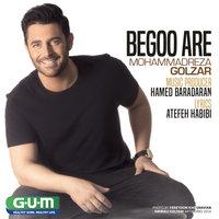 Mohammadreza Golzar - 'Begoo Are'