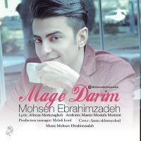 Mohsen Ebrahimzadeh - 'Mage Darim'