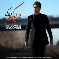 Naser Pourkaram - 'Divoonegi'