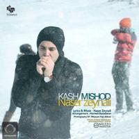 Naser Zeynali - 'Kash Mishod'