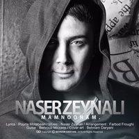 Naser Zeynali - 'Mamnoonam'