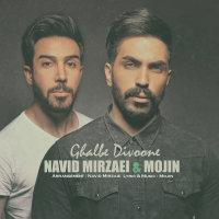 Navid Mirzaie & Mojin - 'Ghalbe Divoone'