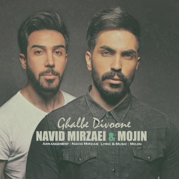 Navid Mirzaie & Mojin - Ghalbe Divoone