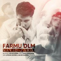 Navid Zardi - 'Farmu DLM'