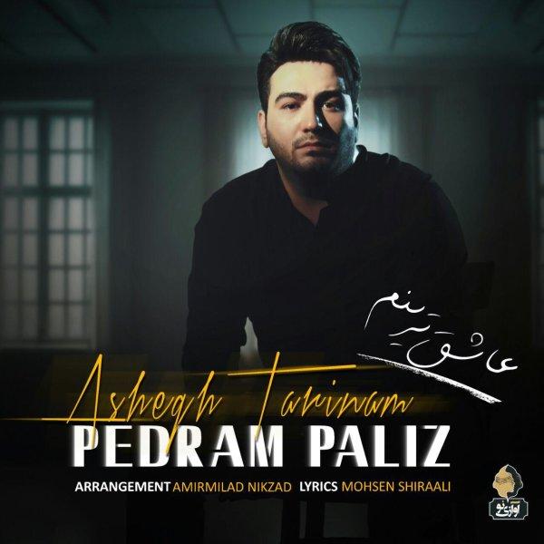 Pedram Paliz - 'Ashegh Tarinam'