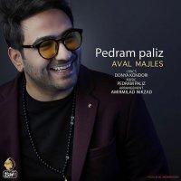 Pedram Paliz - 'Aval Majles'