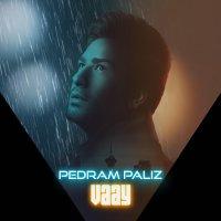 Pedram Paliz - 'Vaay'