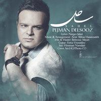 Pejman Delsooz - 'Sahel'