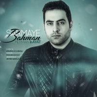 Peyman Bayat - 'Sarmaye Bahman'