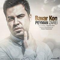 Peyman Zarei - 'Bavar Kon'