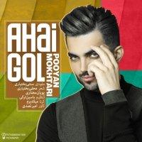 Pooyan Mokhtari - 'Ahai Gol'