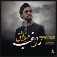 Ragheb - 'Hamine Eshgh (Electronic Version)'