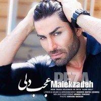 Reza Malekzadeh - 'Ajab Deli'
