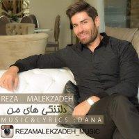 Reza Malekzadeh - 'Deltangihaie Man'