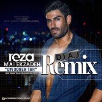 Reza Malekzadeh - 'Divooneh Tar (Remix)'
