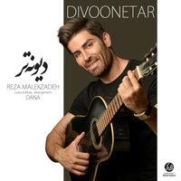 Reza Malekzadeh - 'Divoonetar'