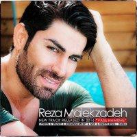 Reza Malekzadeh - 'Vase Hamish'
