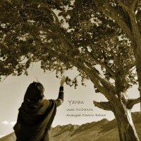 Roshanan - 'Yaran'