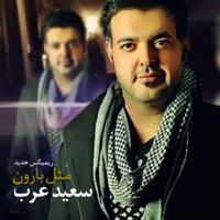 Saeed Arab - 'Mesle Baroon (Remix)'