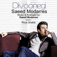 Saeed Modarres - 'Divoonegi'