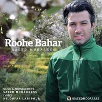 Saeed Modarres - 'Roohe Bahar'