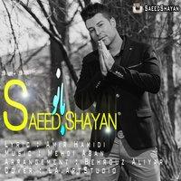 Saeed Shayan - 'Banoo'