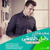 Saeed Shayan - 'Dalile Delkhoshi'